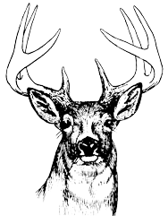 Eight Point Sportsmen's Club
